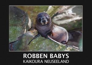 Robben Babys